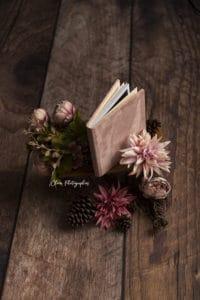 clover photographies - album photo maraige, album photo naissance