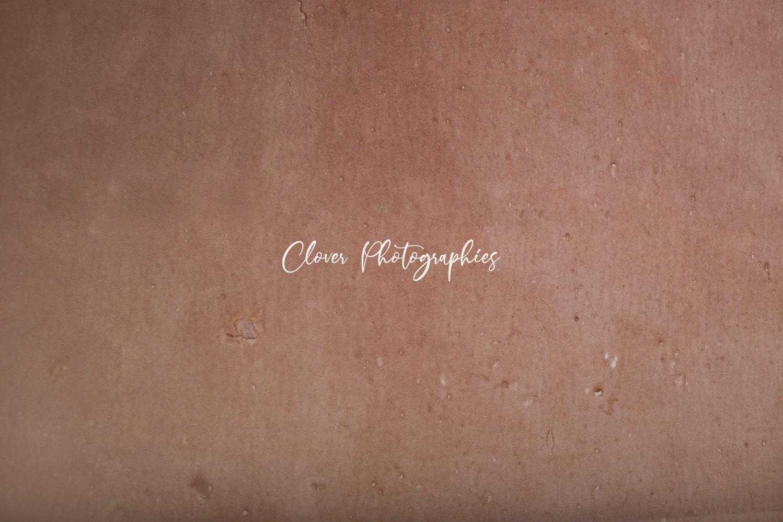 clover photographies - fond de studio