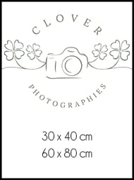 tableau clover photographies
